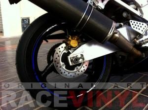 Honda-CBR-954-RR-Azul-Race-CBR-900-RR-Javier-trasera.JPG