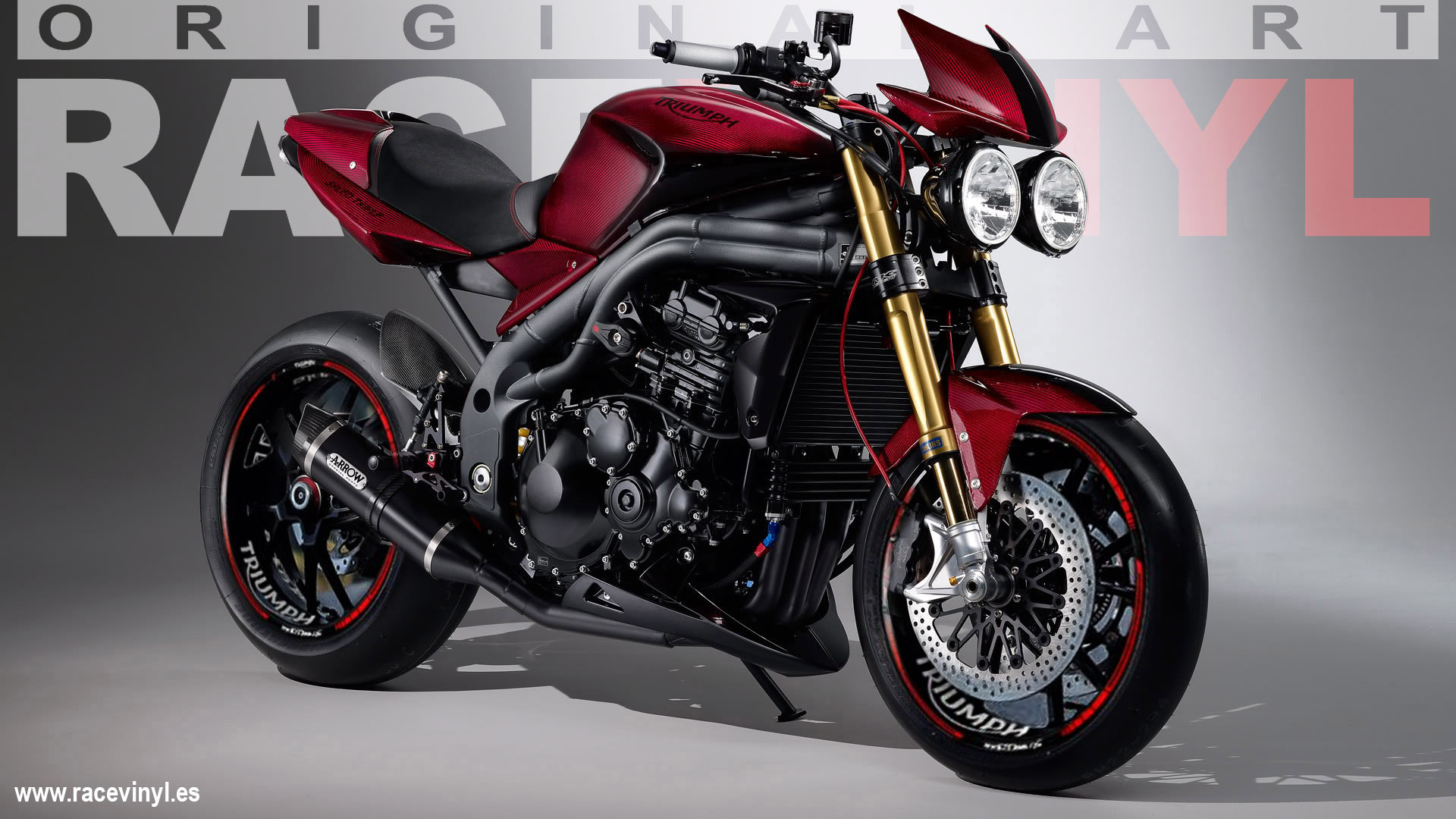 rim stickers kit pro in vinyl for Triumph Speed Triple